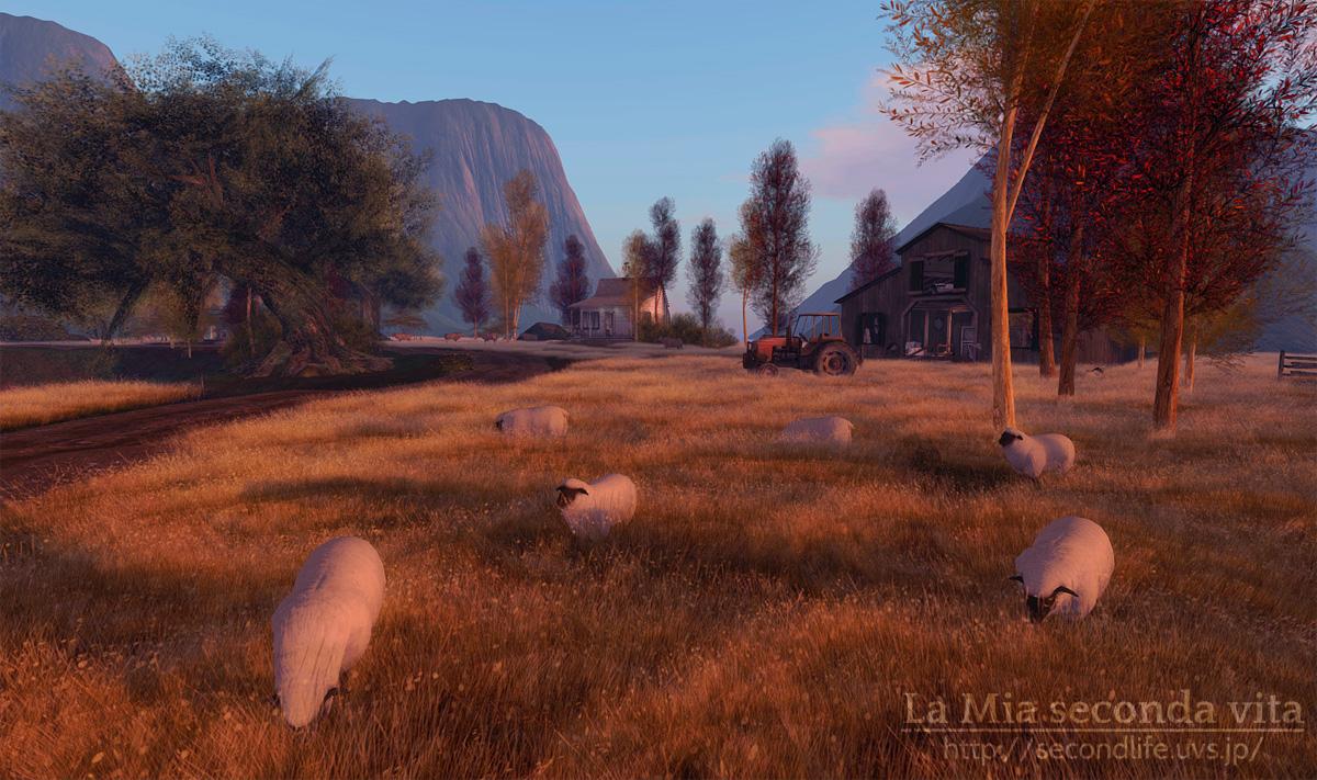 secondlife-Kaleidoscope02 セカンドライフ 羊の放牧風景