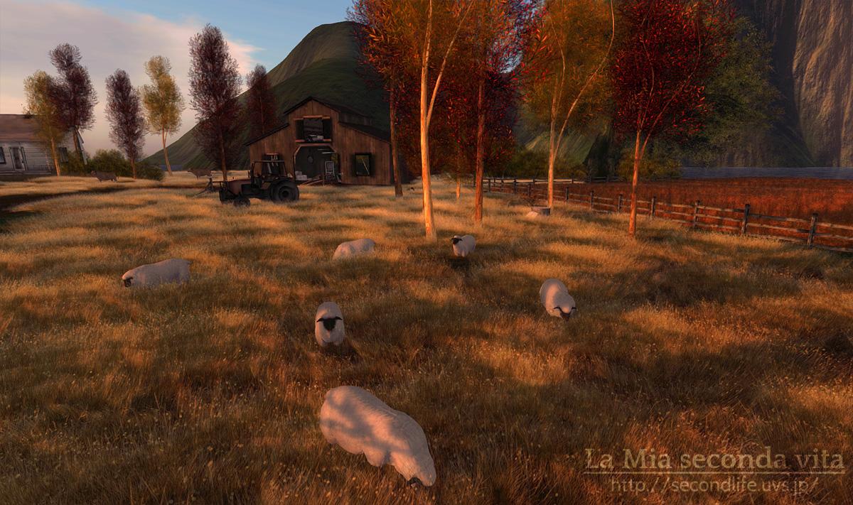 secondlife-Kaleidoscope03 セカンドライフ 羊と夕焼け