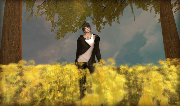 secondlife20160328-3