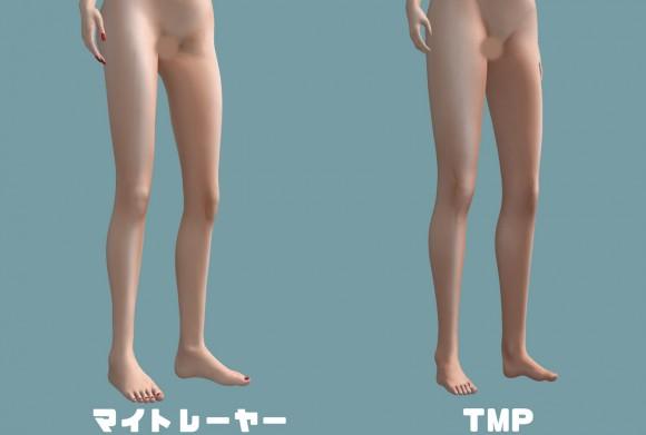TMP-meshbody08