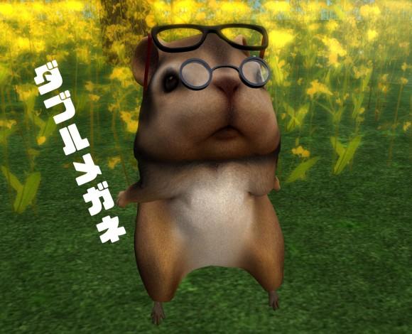 hamster03