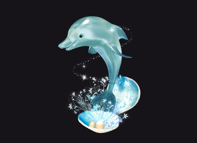 Celebration flower – 祝い花 for Sky Dolphin
