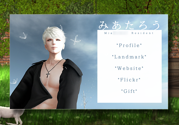 secondlifecard2