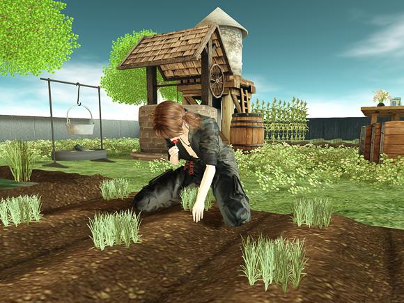 セカンドライフ DFS農作業風景